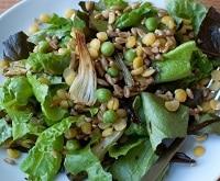 insalata farro e lenticchie