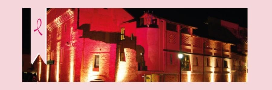 monumenti biellesi in rosa