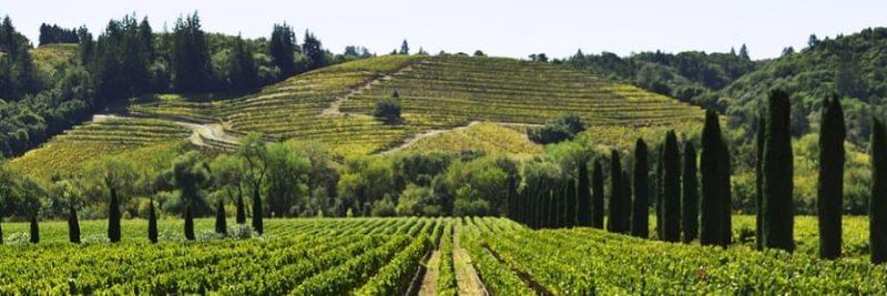 Vivere a lungo in Italia