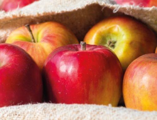 Frittelle di mele al forno: una ricetta leggera e gustosa