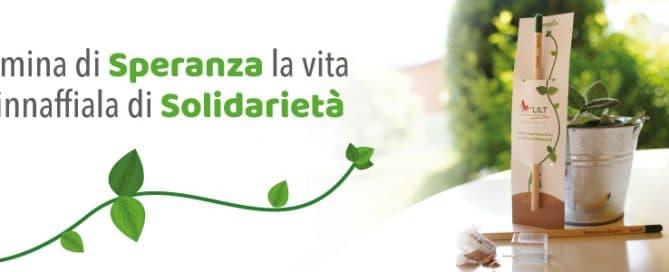 Matita Solidale - LILT Biella