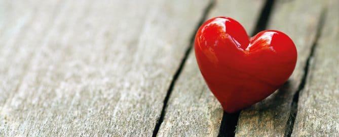 Amore - Hospice di Biella - LILT Biella